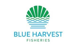 Blue Harvest Seafood, New Bedford, MA Massachusetts